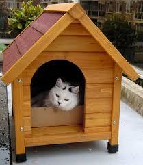 Woodwork Cat House Plans Free PDF Planscat house plans