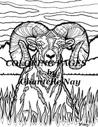Small Picture Bighorn Sheep Coloring page adult coloring picture animals