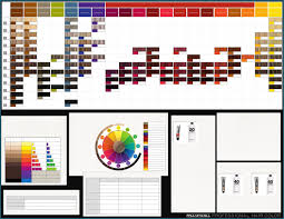 Paul Mitchell The Color Xg Chart Best Picture Of Chart