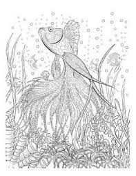 Oceana Coloring Coloring Pages Adult Coloring Pages Ocean