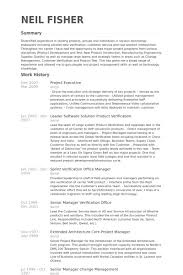 Project Executive Resume samples
