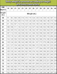 Human Height Conversion Chart Human Height Conversion Related Keywords Suggestions