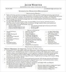 Sample Executive Resume Format Amazing Executive Resume Formats Simple Example Job Experience For A