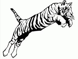 Small Picture Tiger Color Sheet A Jumping Tiger Coloring Page Print For Kids