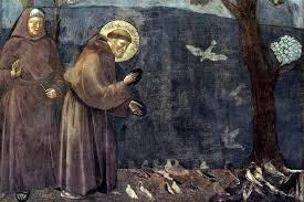 Image result for st francis assisi teacher