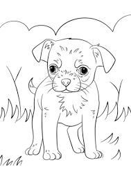 Small Picture Chihuahua Puppy coloring page Free Printable Coloring Pages