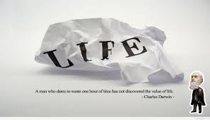 value of life the value of life