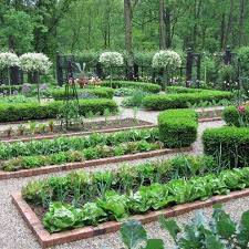 best garden vegetables. Small Vegetables Garden For Beginners_25 Best