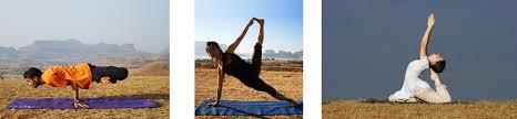 basic to advance asana yoga poses