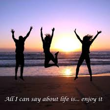 an indispensible essay on life positive quotes on enjoying life not wasting time boolumaster dj mixes