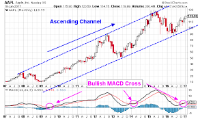 Apple Inc Aapl Stock Chart Forecasts Much Higher Prices