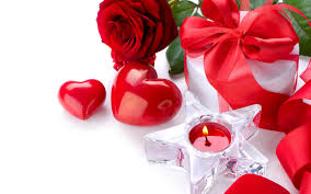 Roses Flowers Wallpapers Rose Flowers Wallpaper 1680x1050 38176