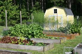one of the most important aspects of planning a raised bed garden is making sure you have good pathways between the beds pathways not only provide you with
