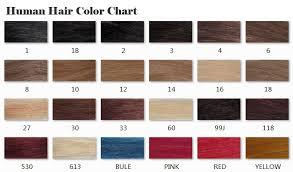 Human Hair Color Chart