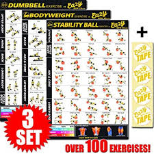 Fitness Program Chart Eazy How To Multi Pack Workout Exercise Banner Poster Train Endurance Tone Build Strength Muscle Big Home Gym Chart 28 X 20