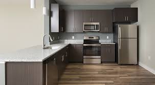 granite countertops stainless appliances
