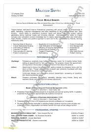 Hybrid Resume Template Word Simple 25 Hybrid Resume Template