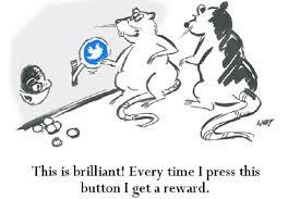 citations by questia behaviorism explains animal and human behavior credit brandmaster