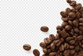 On this page, you can find a png clipart associated with the tags: Coffee Beans Coffee Bean Espresso Cafe Kopi Luwak Black Beans Black Hair Black White Png Pngegg
