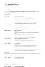 Resume Template For Project Manager It Project Manager Cv Template