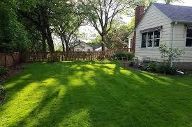 Spring Cleanup Guide For Lawns Kg Landscape Management