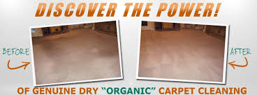 image link go dry carpet upholstery cleaning
