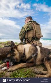 US Marine Corps Sgt. Zachary Gaines with his dog, Dollar, maintain ...