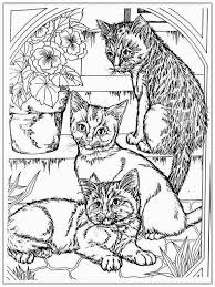 Small Picture Cat Coloring Pages Free Coloring Pages