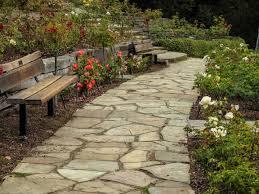 berkeley rose garden 6