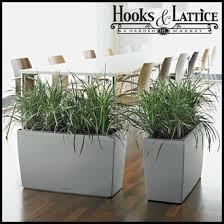 office planter boxes. office planters planter boxes
