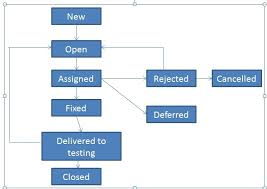 Software Testing Defects Life Cycle