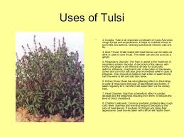 medicinal plants uses by allah dad khan 15
