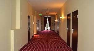 Valga - hotell, metsis