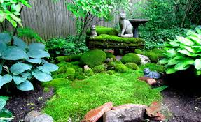 Buy Moss Online. Free Shipping Coupon Code \