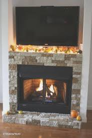 fireplace creative pleasant hearth fireplace doors small home decoration ideas lovely at room design