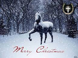 Download Wallpapers Horse In Snow (1024 ...