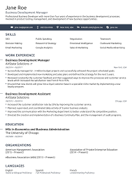 Effective Resume Templates 24 Professional Resume Templates As They Should Be [24] 6