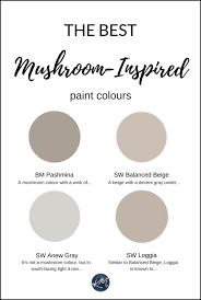 the 5 best mushroom inspired paint