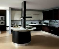 Modern kitchen colors 2014 Bold Kitchen Ideasawesome Creative Round Black Modern Acrylic Kitchen Island With Whiet Quartz Countertop Also Callstevenscom Kitchen Ideas Awesome Creative Round Black Modern Acrylic Kitchen