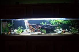 fish tank lighting ideas. Rated #9: Millerbuilds Fish Tank Lighting Ideas