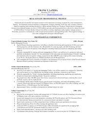 Real Estate Marketing Resume