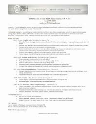Artist Resume Examples Beautiful Plagiarism Checker For Research
