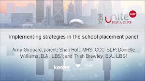 Implementing strategies in the school placement panel - YouTube