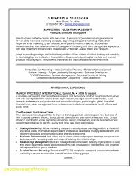 Business Analyst Resume Examples Unique Inspirational It Security