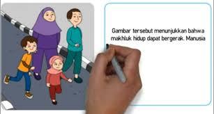 We did not find results for: Ciri Makhluk Hidup Berdasarkan Gambar Kunci Jawaban Tema 1 Kelas 3 Sd Halaman 46 47 Ringtimes Bali