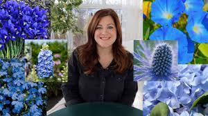 20+ Plants With <b>Blue Flowers</b>! // Garden Answer - YouTube