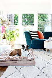 first you should know i have 3 elementary age kids and a 54 pound dog i did question myself just once about the very light color of the rug knowing our