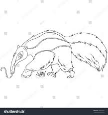 Small Picture Coloring Page Cartoon Anteater Animal Coloring Stock Vector