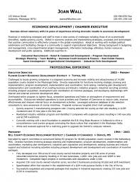 Non Profit Executive Director Resume Examples Resume Papers