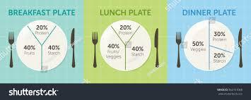 Healthy Eating Plate Diagram Breakfast Lunch Stock Vector
